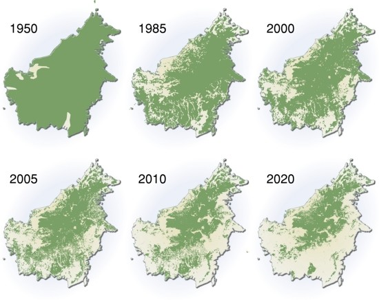extent-of-deforestation-in-borneo-1950-2005-and-projection-towards-2020_119c
